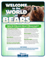 Disney  Nature Bear Printable Facts