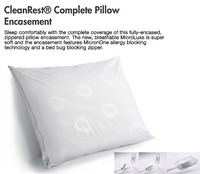 Clean Rest Pillow Case